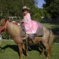 Pony Express Pony Rides - Petting Zoos for Parties in San Antonio, Texas