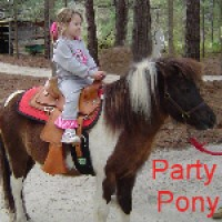 Pony Rides - Petting Zoos for Parties in Valdosta, Georgia