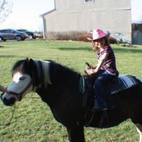 Pony Rides By Donna, LLC - Children's Party Entertainment / Holiday Entertainment in Colora, Maryland