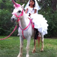 Pony Rides USA - Pony Party in Lakewood, Colorado