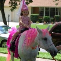 Pony World Adventure LLC. - Princess Party in Newark, Delaware