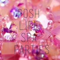 Posh Life Party Spa - Princess Party in Charleston, South Carolina