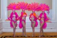 Premier Showgirls-Vegas Showgirls for hire