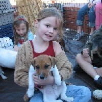 Puppies and Reptiles for Parties - Pony Party in Santa Ana, California
