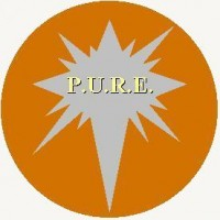 P.u.r.e. - Classic Rock Band in Fairfax, Virginia