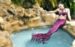 Mermaid Entertainment