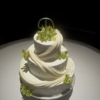 QT Cakes - Wedding Cake Designer in Sioux Falls, South Dakota