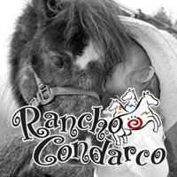 Rancho Condarco LLC - Pony Party in Denison, Texas