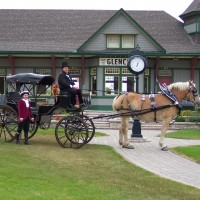 Rangerbelgians - Horse Drawn Carriage in Norwalk, Ohio
