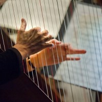 Rebecca Anstine Smith - Harpist in Columbia, Maryland