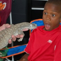 Reptile Adventure - Pony Party in Petersburg, Virginia