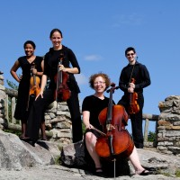 Riverside Quartet - Cellist in Victoriaville, Quebec