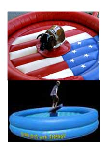 Mechanical bull and surfer