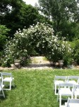 Clarksville Wedding
