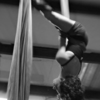 Rohnert Park Aerial Arts - Circus & Acrobatic in Napa, California