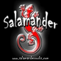Salamander - Wedding Band in Lawrence, Kansas