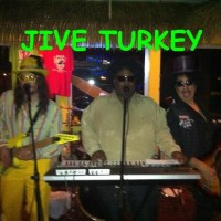 Jive Turkey - Funk Band in St Louis, Missouri