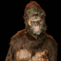 Sammy the Seattle Sasquatch (Bigfoot) - Costumed Character in Everett, Washington
