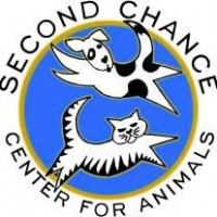 Second Chance Center for Animals - Reptile Show in Flagstaff, Arizona