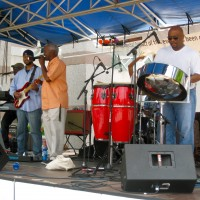 Sensory Expressions - Steel Drum Player in Research Triangle Park, North Carolina