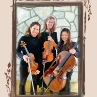 SerenaStrings - String Trio in Spokane, Washington
