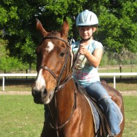 Serenity Stables LLC - Animal Entertainment in Spring Hill, Florida