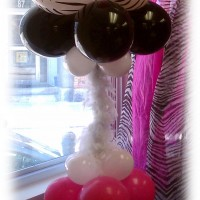 Seshalyn Parties - Party Decor in Southbridge, Massachusetts