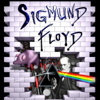 Sigmund Floyd - Rock Band in Coral Gables, Florida