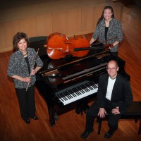 Silver & Strings Trio - Classical Music in Highland Park, Michigan