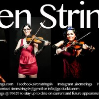 Siren Strings - Viola Player in Paradise, Nevada