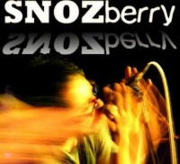 SNOZberry - Party Band in Memphis, Tennessee