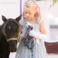 Soby Ranch Ministry - Petting Zoos for Parties in Omaha, Nebraska