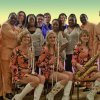 Soul Sound Revue - Dance Band in Johnson City, New York