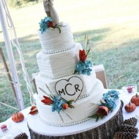 Southern Event Solutions - Cake Decorator in Roanoke, Virginia