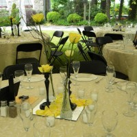 Special Events and Decorations - Event Services in Asheville, North Carolina