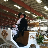 Starlight Carriages - Horse Drawn Carriage in Bakersfield, California