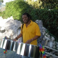 Steel Drum Player - Steel Drum Player in Napa, California