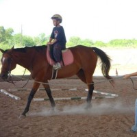 Sterling Hunter Jumpers Riding Stable - Pony Party in Pflugerville, Texas