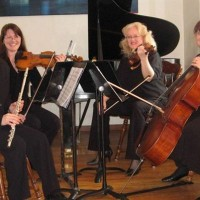 Sterling Strings of Shenango - Classical Duo in Morgantown, West Virginia