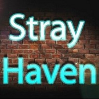 Stray Haven - Bands & Groups in Binghamton, New York