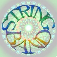 String Band - Grateful Dead Tribute Band in ,