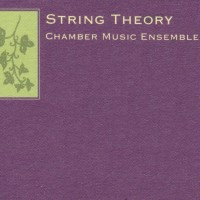 String Theory - String Quartet in Atlanta, Georgia
