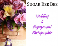 Sugar Bee Bee - Portrait Photographer in Winter Park, Florida