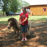 Sunny Brooke Farm and Pony Ranch - Pony Party in Greenville, South Carolina