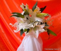 T. Rena Weddings / Events Inc. - Wedding Florist in ,