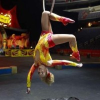Tara Elaina - Aerialist in Broomfield, Colorado