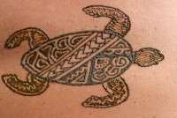 Maui Temporary Tattoos - Wait Staff in Kihei, Hawaii