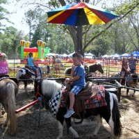 Taylors Pony Parties - Pony Party in Jackson, Mississippi