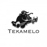 Tekamelo - Latin Band in Silver Spring, Maryland
