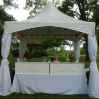 Tent-Sational Events - Horse Drawn Carriage in Augusta, Georgia